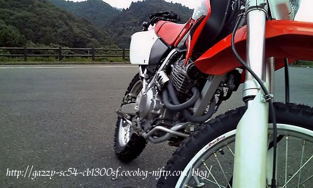 F1010006jpgt2